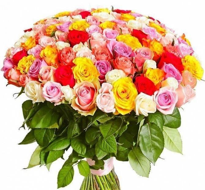 101 разноцветная розаРозы<br>Композиция из 101 розы<br>нежного кремового, роскошного алого, игривого розового, сочного желтого и<br>волнительного персикового цвета с деликатными белыми бутонами балует<br>многогранностью и оригинальностью. Такой букет призван покорить сердце дамы,<br>восхитить её и пригласить на романтическое свидание. Не стоит останавливаться<br>на значении отдельных оттенков, ведь они идеально дополняют друг друга и<br>выглядят поистине роскошно. Если вам уже давно не удается добиться внимания<br>девушки, букет из 101 разноцветной розы в мгновение ока решит этот вопрос и<br>объяснить серьезность ваших намерений.<br>