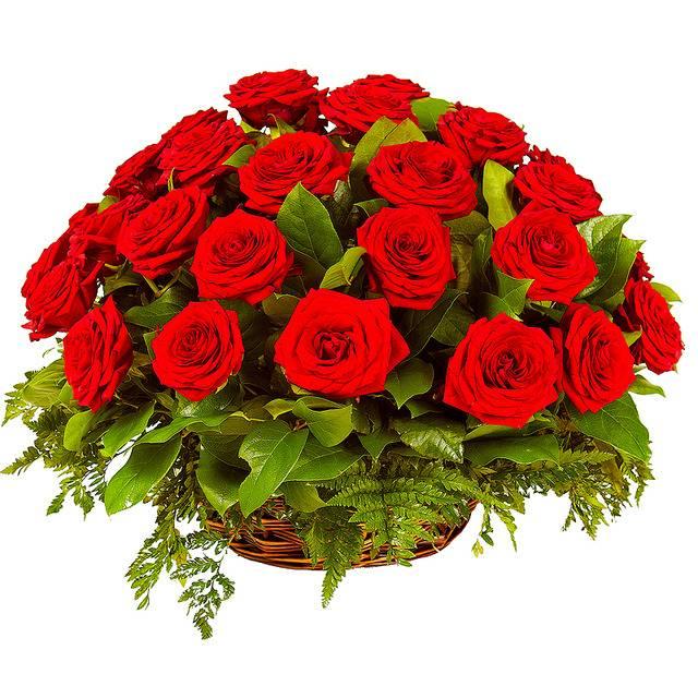 Рубиновое счастьеКорзины с цветами<br>Корзинка - давно популярный способ для оформления красивых цветов по<br>любому поводу. Красные розы символизируют любовь, страсть и хорошее<br>отношение, цвет наиболее популярен среди остальных и не зря, ведь с ним<br>цветы смотрятся впечатляюще красиво. Подарив букет «Рубиновое счастье», вы<br>получите прощение или любовную взаимность от милой сердцу девушки.<br>