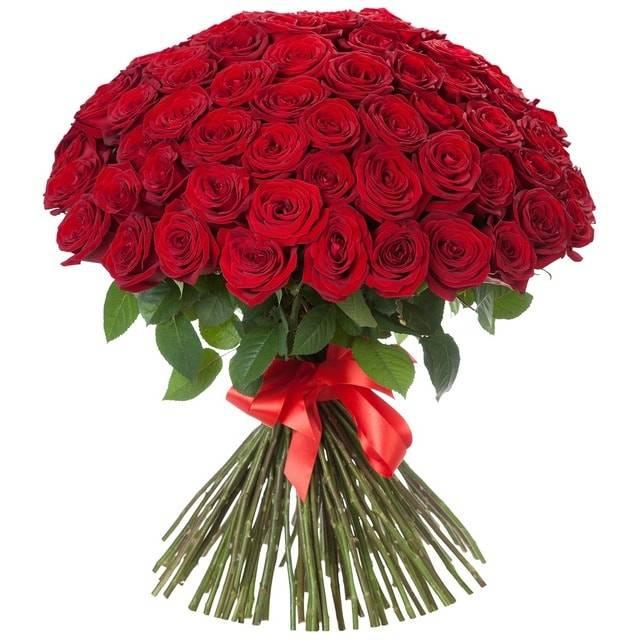 51 красная розаРозы<br>Букет, состоящий из огромного количества красных роз, не сможет оставить<br>равнодушным. Это классика, проверенная годами, поможет растопить сердце<br>близкого человека. Красные розы всегда означали страсть и любовь, прекрасно<br>подходят для выражения чувств женщине или мужчине, поднимают настроение<br>и уносят в мир романтики непередаваемым запахом.<br>