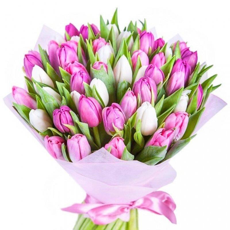 Облако тюльпановТюльпаны<br>Если вам кажется, что<br>букеты из 3-5 тюльпанов выглядят немного скучно, пышная цветочная комбинация из<br>нескольких десятков любимых свежих весенних цветов наверняка превзойдет ваши<br>ожидания. «Облако тюльпанов» балует оригинальным нежным сочетанием игривых<br>розовых бутонов с безмятежными белоснежными тюльпанами. Они идеально дополняют<br>друг друга, создавая элегантную композицию, символизирующую радость и счастье.<br>Такой букет идеально подойдет для романтического свидания, но также будет не<br>менее уместным на дне рождения мамы, сестры или близкой подруги. Его пьянящий<br>аромат наполнит комнату приятной сладостью, которая будет долго радовать<br>виновницу торжества.<br>