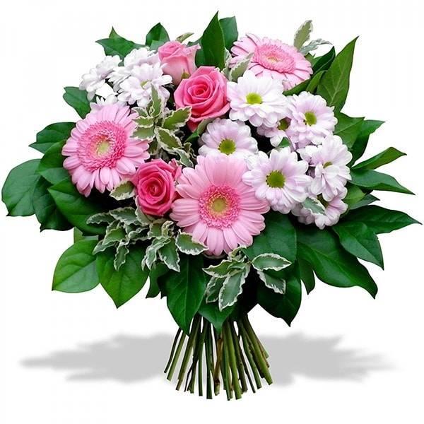 Двойная ромашкаГерберы<br>Букет «Двойная ромашка» наполнен светлой цветовой палитрой. Здесь<br>подобрано удачное сочетание белого, розового и нежно-розового. Розы,<br>герберы и хризантемы вместе создали шикарную композицию. Вместе, цветы<br>выражают искренность, надежду, легкость, улыбку и небольшую тайну. Букет<br>идеально подойдет для друзей или любимых, чтобы повысить настроение или<br>извиниться.<br>