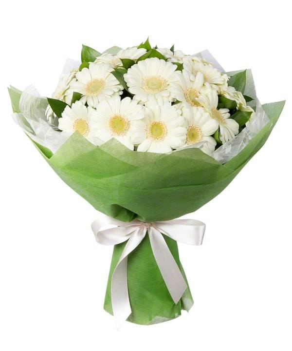 Белая ромашкаГерберы<br>Букет «Белая ромашка» состоит из гербер белого оттенка, эти цветы очень<br>напоминают ромашку, но гораздо больше и красивее. Герберы – цветы<br>передающие скромность, изящность, простоту и уважение. Букет идеален для<br>подарка другу или коллеге в честь праздника, например, свадьбы или юбилея.<br>Композиция располагает к себе своим утонченным видом и приятным<br>ароматом.<br>