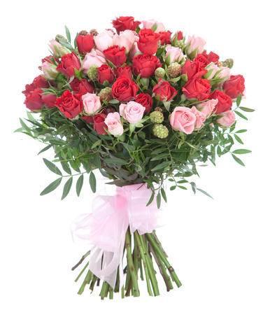 ЕжевикаКустовые розы<br>Смесь розовых и красных роз – идеальное сочетание для выражения теплых и<br>нежных эмоций. Возлюбленная девушка непременно оценит такую смесь<br>разных сторон любви: розовый покажет, насколько вы преданны и искренни, а<br>красный страсть и подлинность чувств. Для друзей букет подойдет не хуже,<br>демонстрируя надёжность и готовность прийти на помощь в любой ситуации.<br>Чувственность вносится благодаря шикарному аромату, а дополнительная<br>зелень переносит ближе к природе.<br>