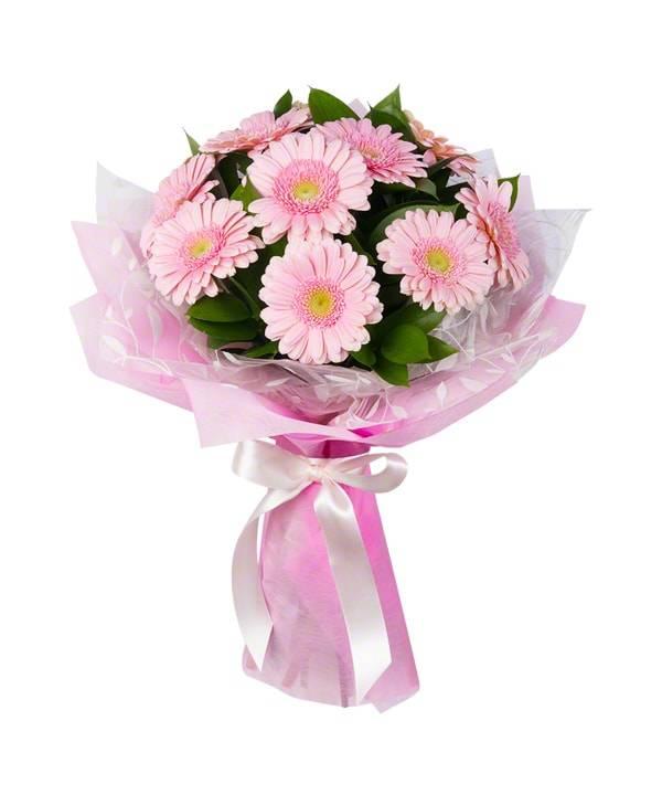 Букет из розовых герберГерберы<br>Основа композиции «Букет из розовых гербер» - небольшие герберы,<br>именуемые гермини. Розовый цвет выражает искренность, надежду на<br>продолжение хороших взаимоотношений, простоту и уважение. Такое<br>сочетание идеально подходит для подарка друзьям или ребенку в честь<br>значимого события или праздника, оставляя приятное впечатление и даря<br>шикарный аромат.<br>