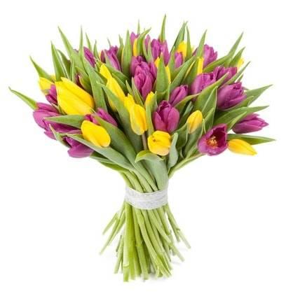 ЭскизТюльпаны<br>Букет из множества ярких тюльпанов – прекрасный способ выразить<br>своё расположение и подарить шикарное настроение возлюбленной, близким<br>друзьям или коллеге по работе. Цветы подойдут для праздника, извинения или<br>просто в виде приятного ненавязчивого жеста, дарящего приподнятое<br>настроение. Фиолетовый цвет покажет уважение и преданность, а желтый<br>принесет лучики солнца в жизнь близкого человека.<br>