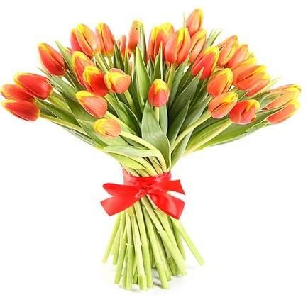 ДвухцветныеТюльпаны<br>Два цвета в тюльпане делают цветок еще красивее и ярче, даря огромный заряд<br>позитива и тёплых эмоций. Красный покажет, насколько вы любите человека и<br>как он дорог сердцу, а жёлтый продемонстрирует важность радости и улыбки.<br>Подходит букет для приятного сюрприза любому члену семьи или в качестве<br>извинения. Цветы вызовут лишь положительные эмоции и укрепят любые<br>отношения, а насыщенный аромат останется в памяти навсегда.<br>