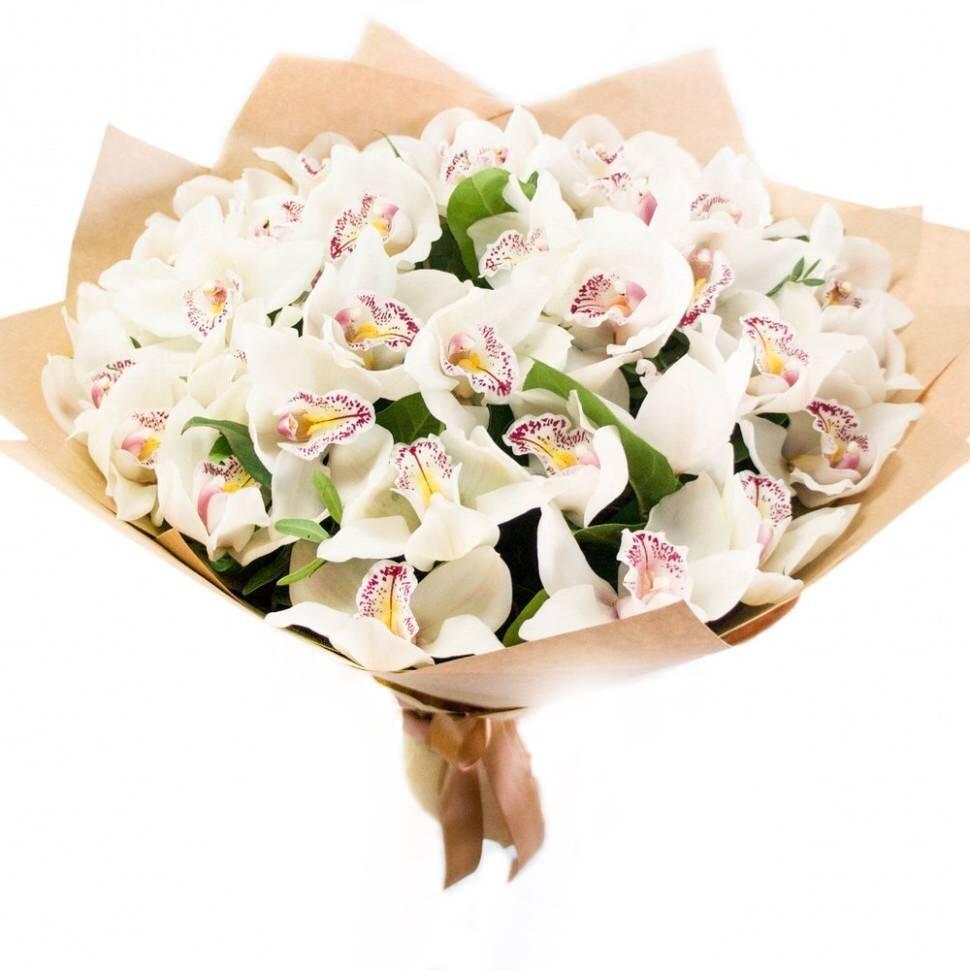 СказочныйОрхидеи<br><br>