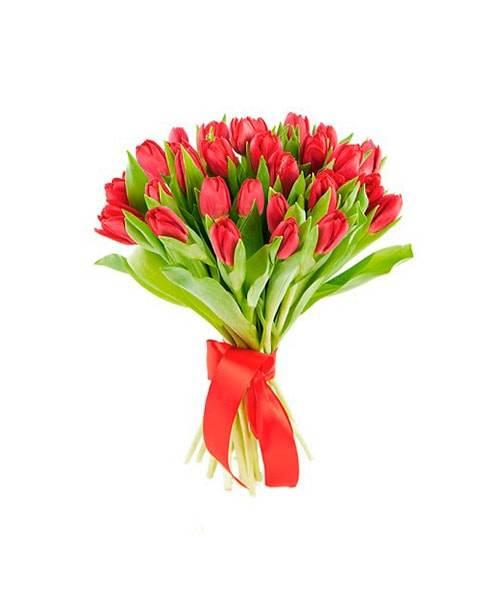 Букет красных тюльпановТюльпаны<br>Это красивый и манящий букет, состоящий из тюльпанов красного цвета. Во<br>всех культурах красные тюльпаны используются для романтичного признания<br>в любви, пробуждая эмоции, они поднимут шансы на взаимность и уж точно не<br>оставят любимую девушку равнодушной. Также эти цветы идеально подойдут<br>для извинения и первого шага на пути примирения: сочетание приятного цвета<br>и запаха оттеснят злость и негативные эмоции.<br>