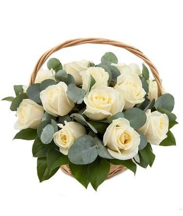 БелоснежнаяКорзины с цветами<br>Стильная корзина из 11 нежно-белых роз будет превосходным<br>подарком для любого человека, особенно цветам обрадуется женщина. Букет уместен<br>на свадьбе или на другом важном торжестве. Также его дарят возлюбленным, так<br>как белые розы отлично передают нежность и чистоту человека, отношений и<br>намерений. Стильное украшение цветочной композиции, где к розам добавлены<br>эвкалипт и салал, убедят получателя в вашем непревзойденном вкусе. Легкий запах<br>придется по вкусу дорогому человеку.<br>