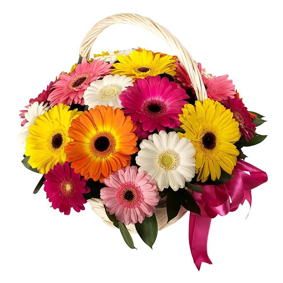 Солнечный райКорзины с цветами<br>Порадуйте ребенка или другого близкого человека яркой цветочной<br>композицией из двадцати пяти гербер. Цветы обозначают радость, открытость и<br>оптимизм, а их яркий окрас добавляет положительных эмоций: белый – нежность,<br>желтый – улыбку, розовый – симпатию. Такой букет подойдет и на подарок<br>мужчинам, начальник или друг будут рады получить подарок в честь<br>знаменательного события или просто так. Цветы помогут наладить контакт с<br>человеком и подарить ему хорошее настроение.<br>